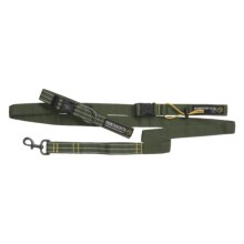 Mountainsmith K-9 Collar and Leash - Medium/Large, Recycled Materials in Pinon Green - Closeouts
