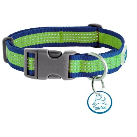 MTN Reflective Dog Collar