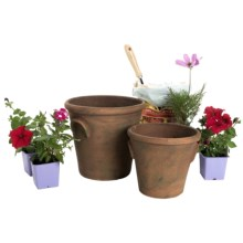 Napa Home & Garden Brooks Flower Pots - Set of 2 in Terracotta - Closeouts