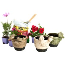 Napa Home & Garden Nesting Sparrows Flower Pots - Set of 3 in Multi-Colored - Closeouts