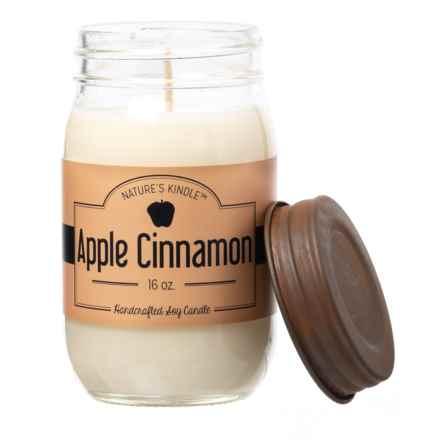 Nature's Kindle Apple Cinnamon Signature Collection Mason Jar Soy Candle- 16 oz. in Apple Cinnamon - Closeouts
