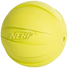 Nerf Pet Squeak Ball in Green - Closeouts