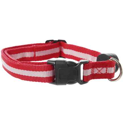 Nitebeams LED Dog Collar - Large in Red - Closeouts
