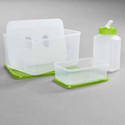 OGGI Chill-To-Go Lunch Box Set - 4-Piece in Green - Overstock