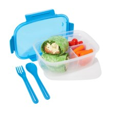 OGGI Chill-to-Go Sectioned Food Container - Fork, Spoon, Freezer Pack in Blue - Overstock