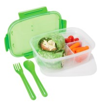 OGGI Chill-to-Go Sectioned Food Container - Fork, Spoon, Freezer Pack in Green - Overstock
