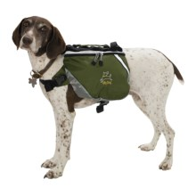 OllyDog Dog Pack - Medium  in Forest - Overstock