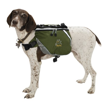 OllyDog Dog Pack - Medium  in Forest