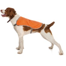 Ollydog Hi Vis Reflective Dog Vest - Medium in Orange - Closeouts