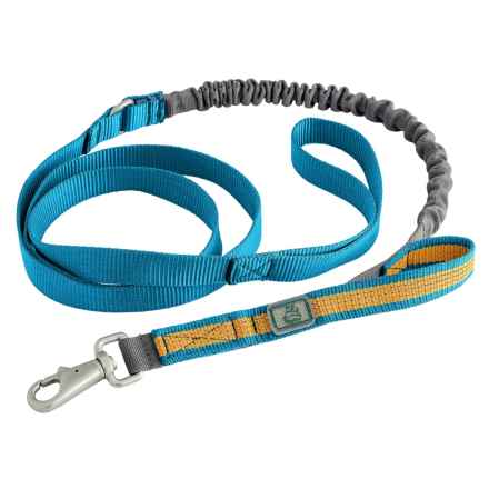 OllyDog MTN Spring Dog Leash - 5' in Blue Amber - Closeouts