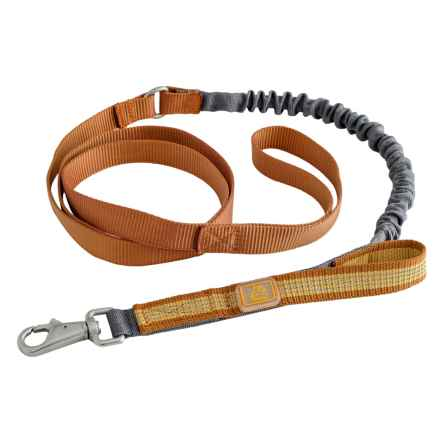OllyDog MTN Spring Dog Leash - 5' in Mango - Closeouts