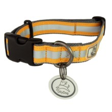 OllyDog Nightlife 2 Dog Collar - Large in Grey/Orange - Closeouts