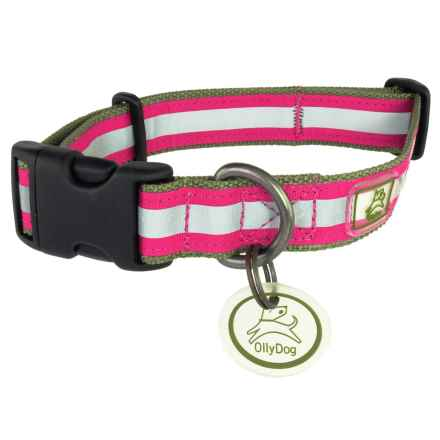 OllyDog Nightlife 2 Dog Collar - Large in Pink/Green - Closeouts