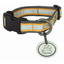 OllyDog Nightlife 2 Dog Collar - Small in Grey/Orange - Closeouts