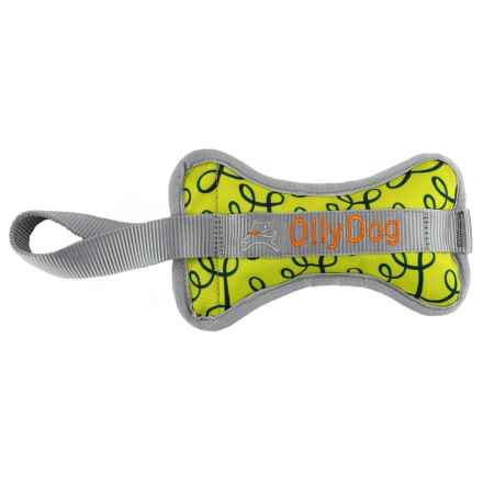 OllyDog Olly Bone II Dog Toy in Limeade - Closeouts