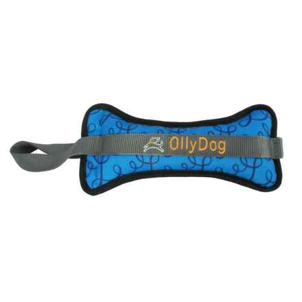 OllyDog Olly Bone II Dog Toy - Large in Blue Loops - Closeouts