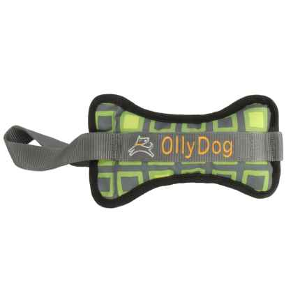 OllyDog Olly Bone II Dog Toy - Large in Green Squares - Closeouts
