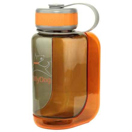 OllyDog OllyBottle Water Bottle - BPA-Free, 20 fl.oz. in Smoke/Orange - Closeouts