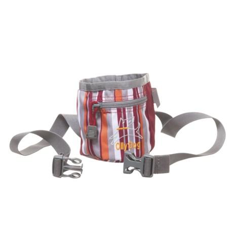 OllyDog Treat Bag Plus in Stripes Chili