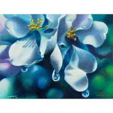 Orchid Heavy with Dew by Ron Richardson in Orchid Heavy With Dew - Closeouts