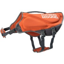 Outward Hound H2Go Neoprene Life Vest - Large in Orange - Closeouts