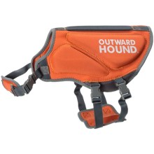 Outward Hound H2Go Neoprene Life Vest - Medium in Orange - Closeouts