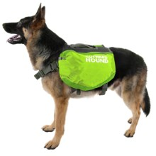Outward Hound Quick-Release Dog Pack - Extra Large in Green - Closeouts