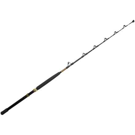 Penn International V Stand-Up Fishing Rod - 1-Piece, 6', Heavy in Black Gold - Closeouts