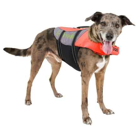 PetEgo Salty Dog Life Jacket - Large in Orange - Closeouts