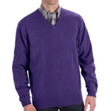 Peter Millar Cashmere Sweater - V-Neck (For Men and Tall Men) in Reign - Closeouts