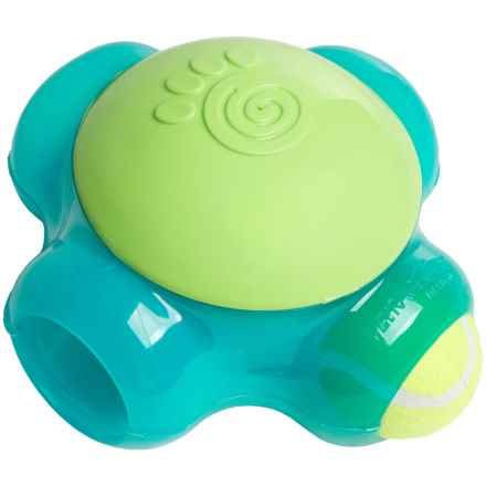 PetRageous ThinkRrageous Chaser-X Ball-Maze Dog Toy in Aqua/Lime - Closeouts