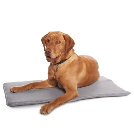 "PetTherapeutics TheraCool Gel Cell Cooling Cushion Dog Bed - 23x36"" in Blue"
