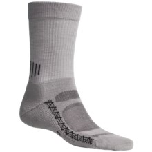 Point6 Active Socks - Merino Wool, Crew (For Men and Women) in Silver - 2nds