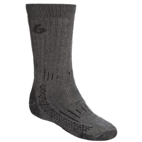 Point6 Heavyweight Boot Socks - Merino Wool, Mid-Calf (For Men) in Grey