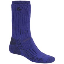 Point6 Hiking Tech Heavyweight Socks - Merino Wool, Mid-Calf (For Men) in Blue Violet - Closeouts