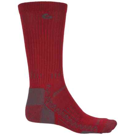 Point6 Hiking Tech Socks - Merino Wool, Crew (For Men and Women) in Crimson - Closeouts