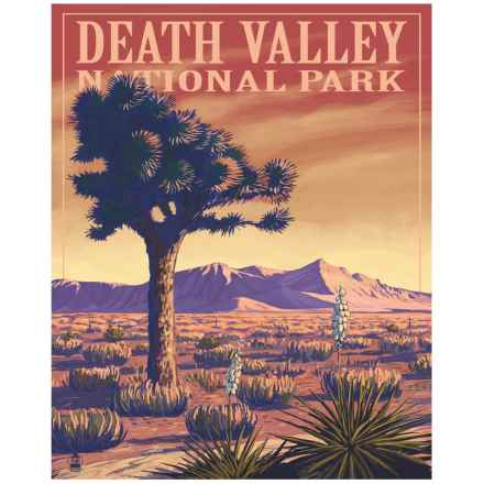 """Portfolio Arts Group Death Valley National Park Print - 16x20"""" in See Photo - Closeouts"""
