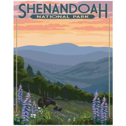 "Portfolio Arts Group Shenandoah National Park Print - 16x20"" in See Photo - Closeouts"