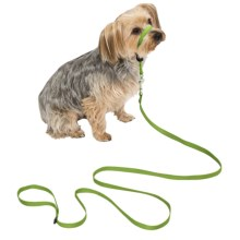 Premier Pet Eco Gentle Leader - Small in Fern Green - Closeouts
