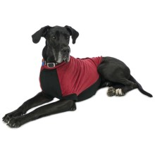 Premier Pet Fido Fleece Dog Sweater - Large-Extra Large Dogs, Size 28/30 in Bones And Dots - Closeouts