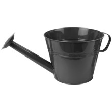 "Pride Garden Products Metal Watering Can Planter - 10"" in Black Zinc - Closeouts"