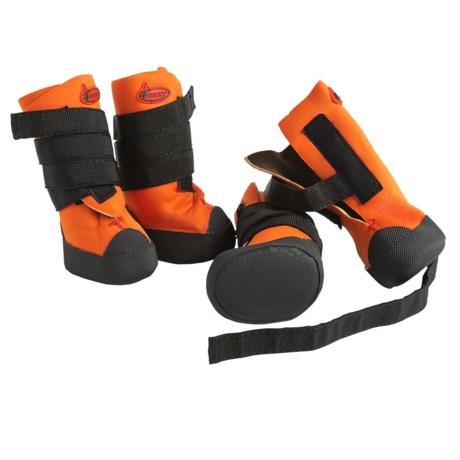 Avery Neoprene Dog Boots