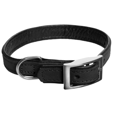 Aurora Pet Products Leather Collar - 5/8""