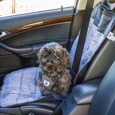 Mega Pet Single Car Seat Dog Mat