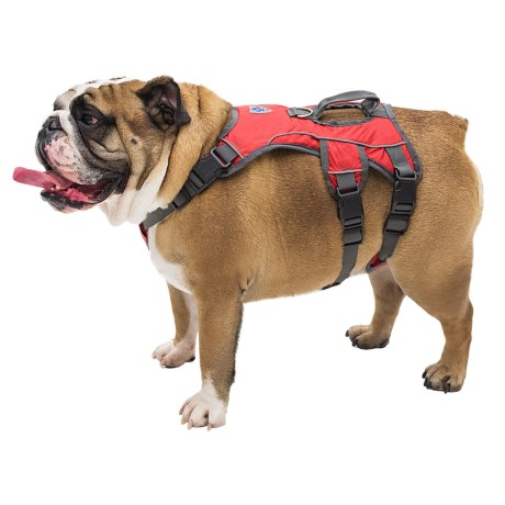 Mega Pet Dog Harness