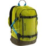 Burton Dayhiker Pro Toxin 28L Backpack