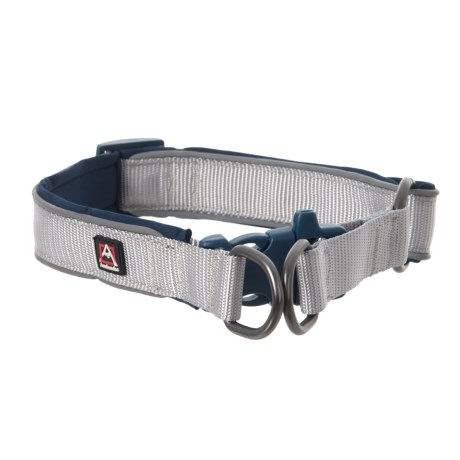 Avalanche Reflective Dog Collar