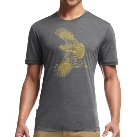 Icebreaker Tech Lite Flight Shirt - UPF 20+, Merino Wool Blend, Short Sleeve (For Men)