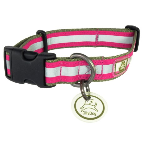 OllyDog Nightlife 2 Dog Collar - Large