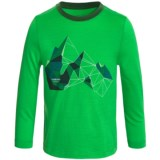 Icebreaker Tech Glass Mountain Shirt - Merino Wool, Long Sleeve (For Little and Big Kids)